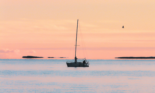 Boat and bird at sunset in Krk